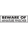 Beware of Miniature Pinscher Sign and Sticker - 12