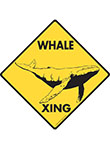 Whale Xing Signs