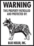 Blue Heeler! Property Patrolled Sign - 9