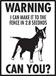 Warning! Miniature Bull Terrier Fence Signs - 9