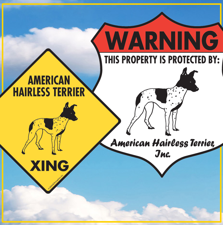 American Hairless Terrier Dog Signs