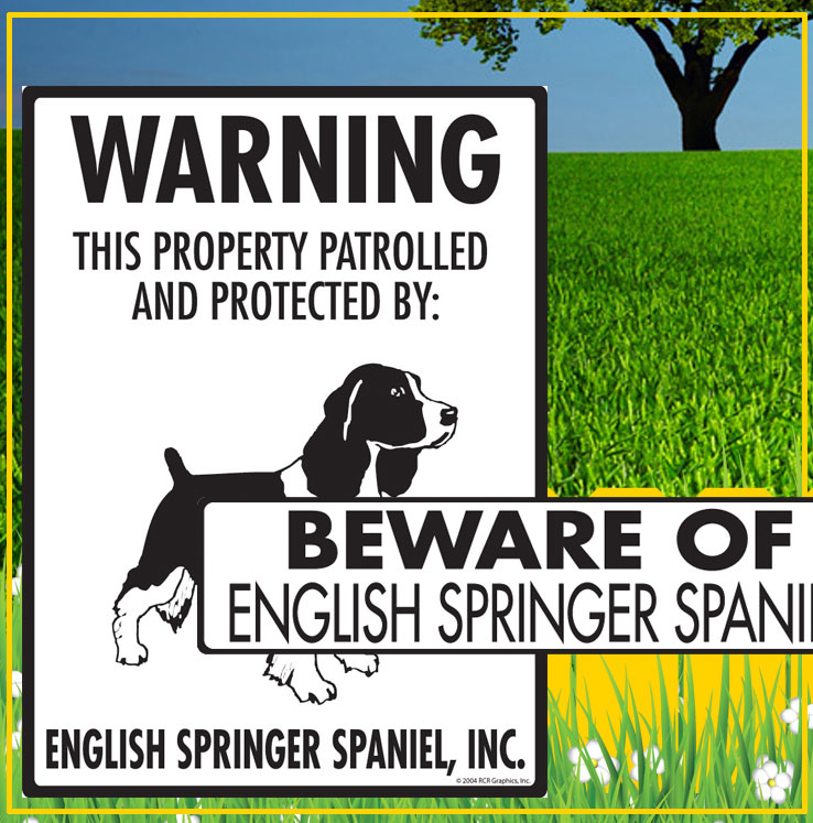 English Springer Spaniel Dog Signs