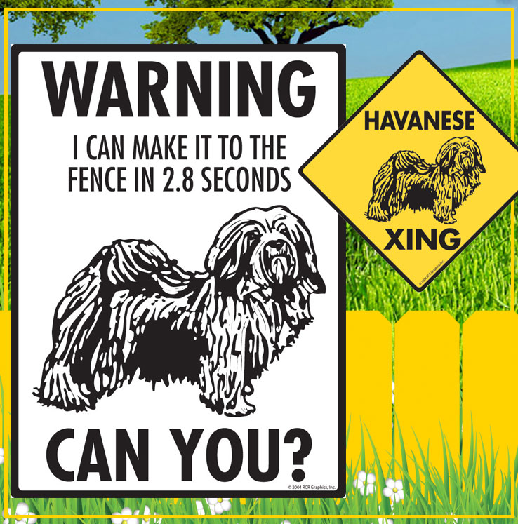 Havanese Dog Signs