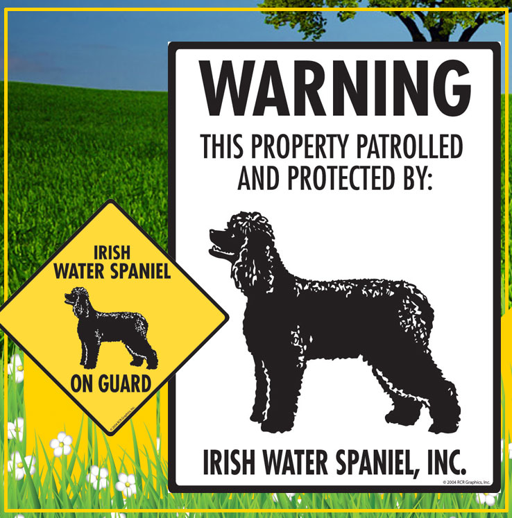 Irish Water Spaniel Dog Signs