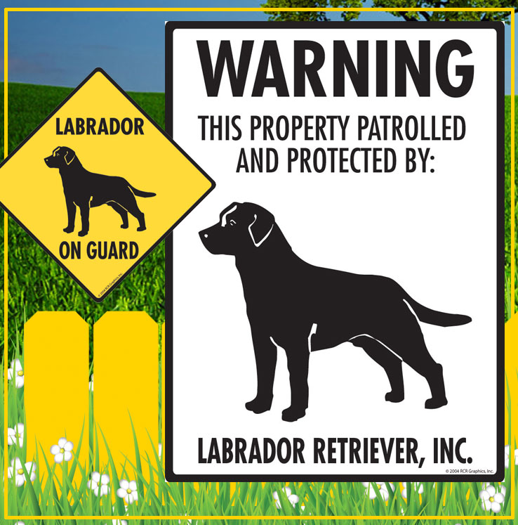 Labrador Retriever Dog Signs