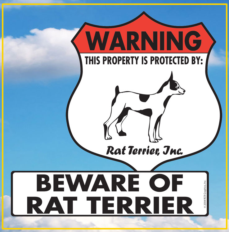 Rat Terrier Signs