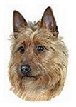 Australian Terrier Stickers