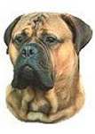 Bullmastiff Stickers