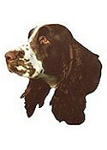 English Springer Spaniel Stickers