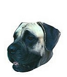 Mastiff Stickers