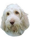 Spinone Italiano Stickers