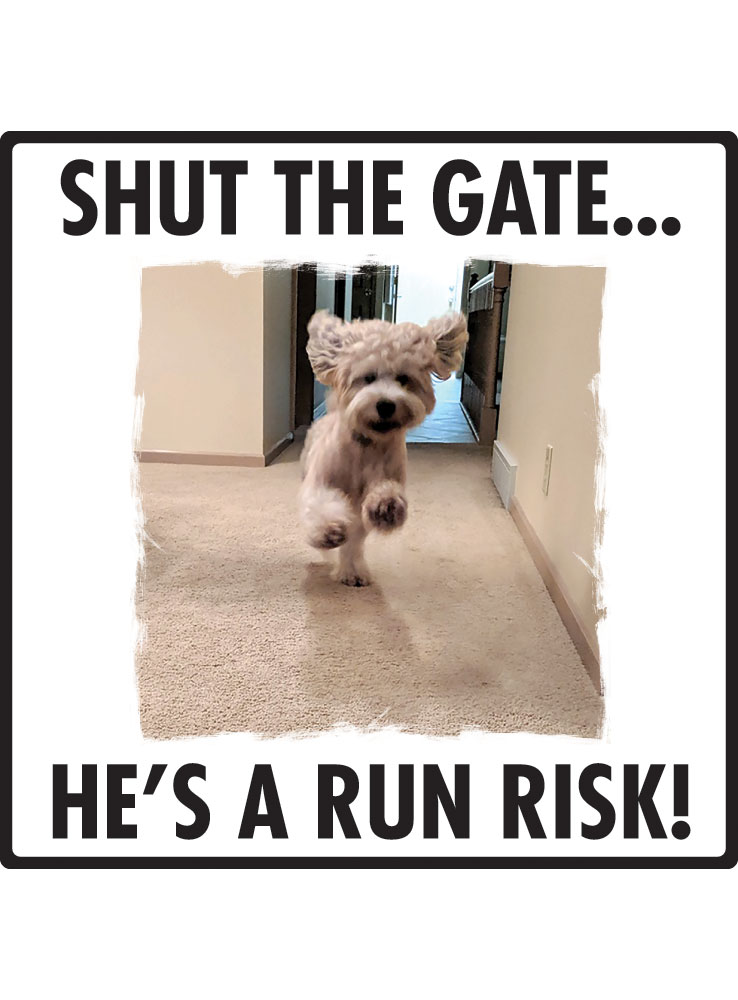 Shut the Gate...
