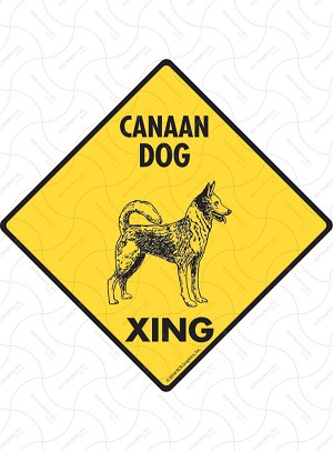 Canaan Dog Xing Sign or Sticker