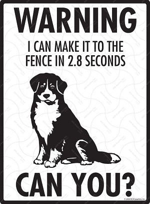 Warning! Bernese Mountain Dog Fence Signs - 9