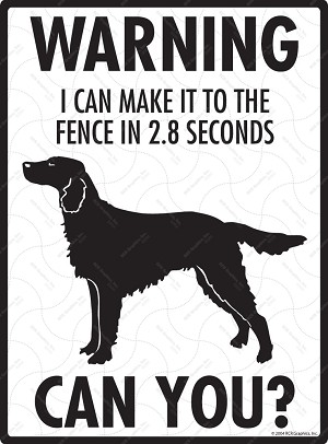 Irish Setter - Warning! Fence Sign