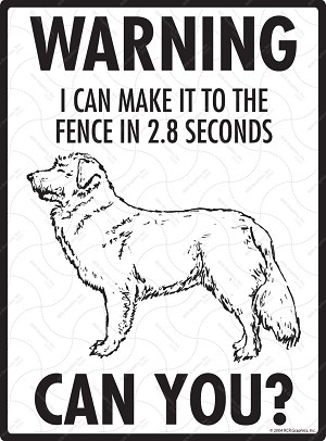 Nova Scotia Duck Tolling Retriever - Warning! Fence Sign