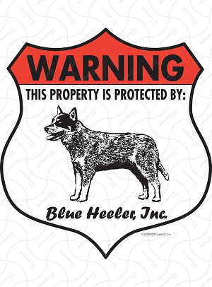 Blue Heeler Badge Shape Sign or Sticker