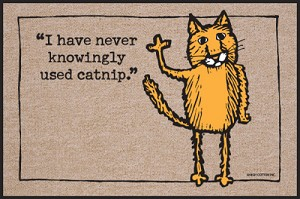 I Have Never Knowingly Used Catnip Doormat