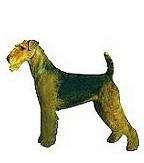 Airedale Terrier Full Color Vinyl Sticker
