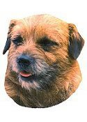 Border Terrier Full Color Vinyl Sticker